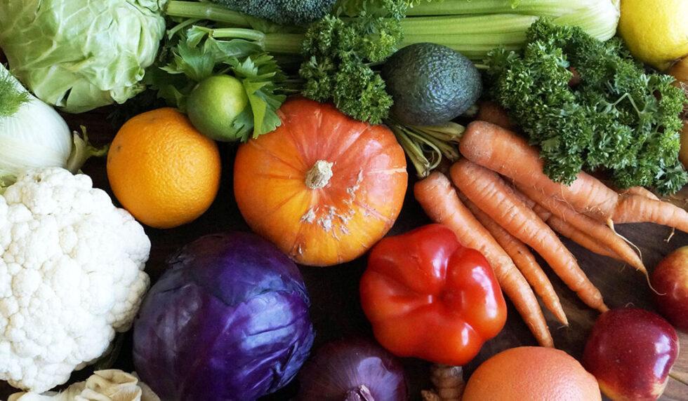 Hvad kan din oplevelse af ernæringsterapi være?