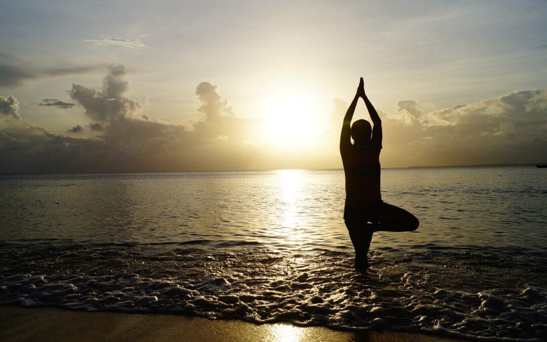 Yoga Mindful Fit